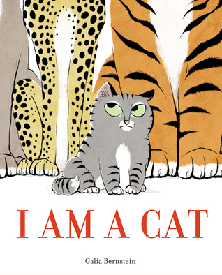 I am a Cat by Galia Bernstein book cover