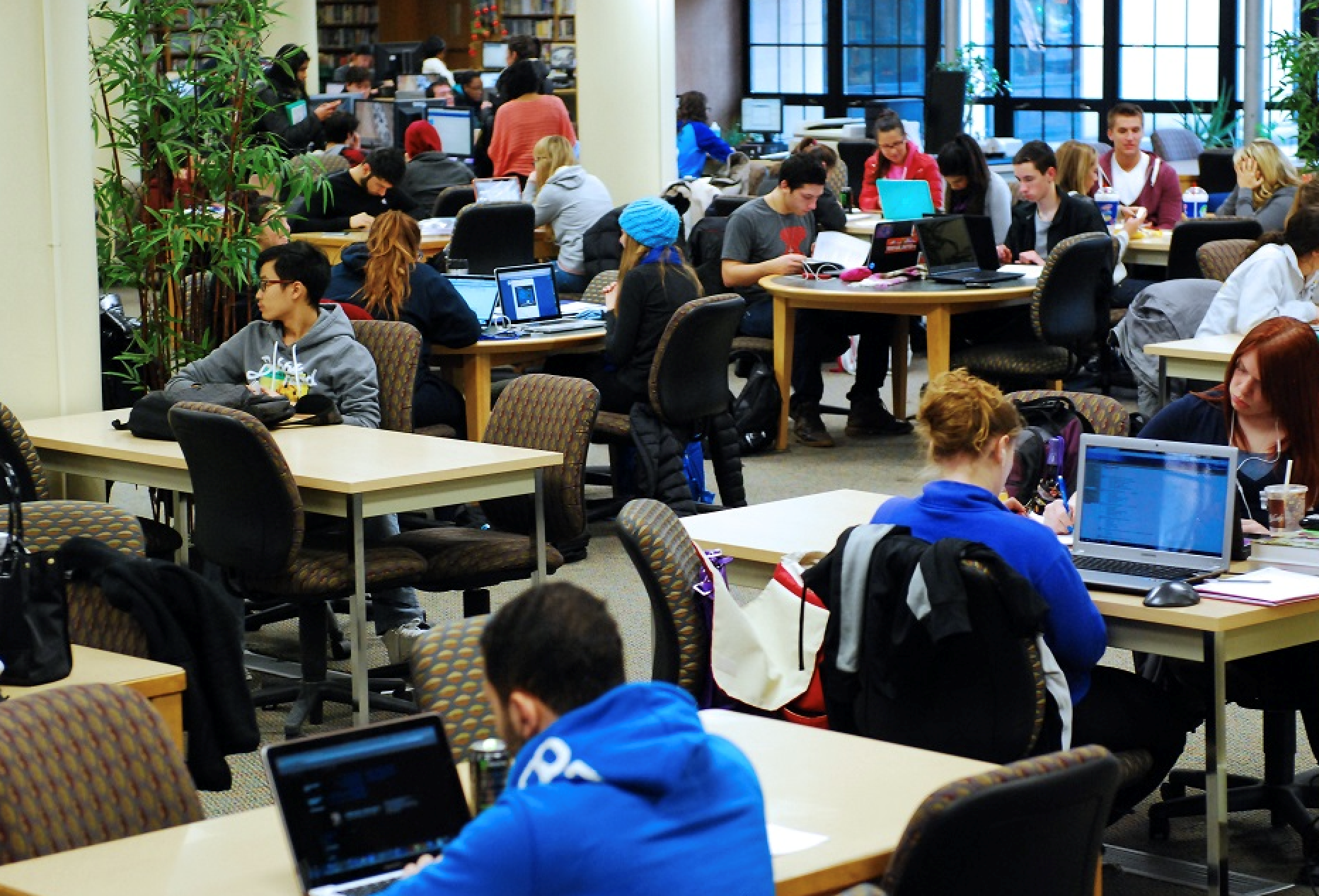 Photograph from the University of Detroit Mercy library. This photo shows a typical day for students who use the library.